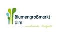logo_bgm_ulm