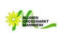 logo_bgm_mannheim